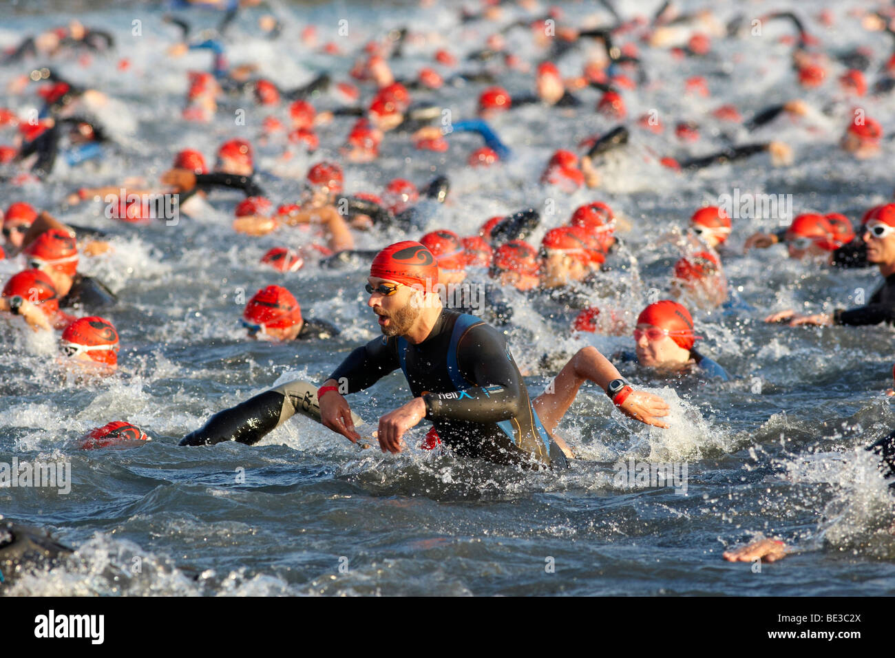 Compétition de natation, triathlon, Ironman Allemagne, Francfort, Hesse, Germany, Europe Photo Stock