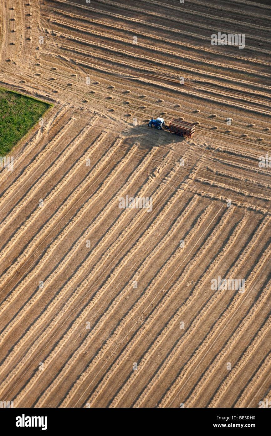 Vue aérienne: tracteur travaillant dans des domaines Photo Stock