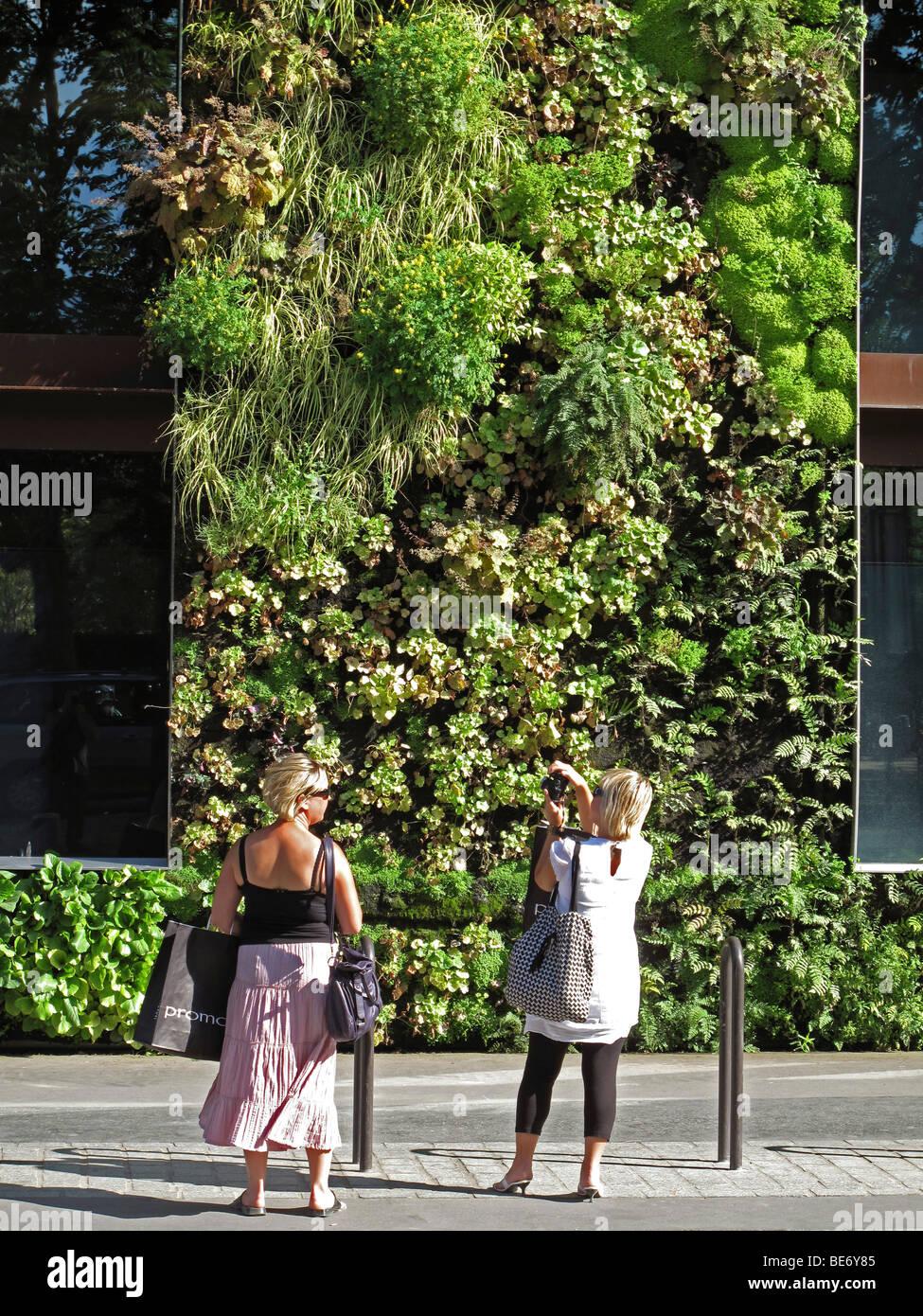 Le jardin vertical de Patrick Blanc,Musée du quai Branly, Paris ...