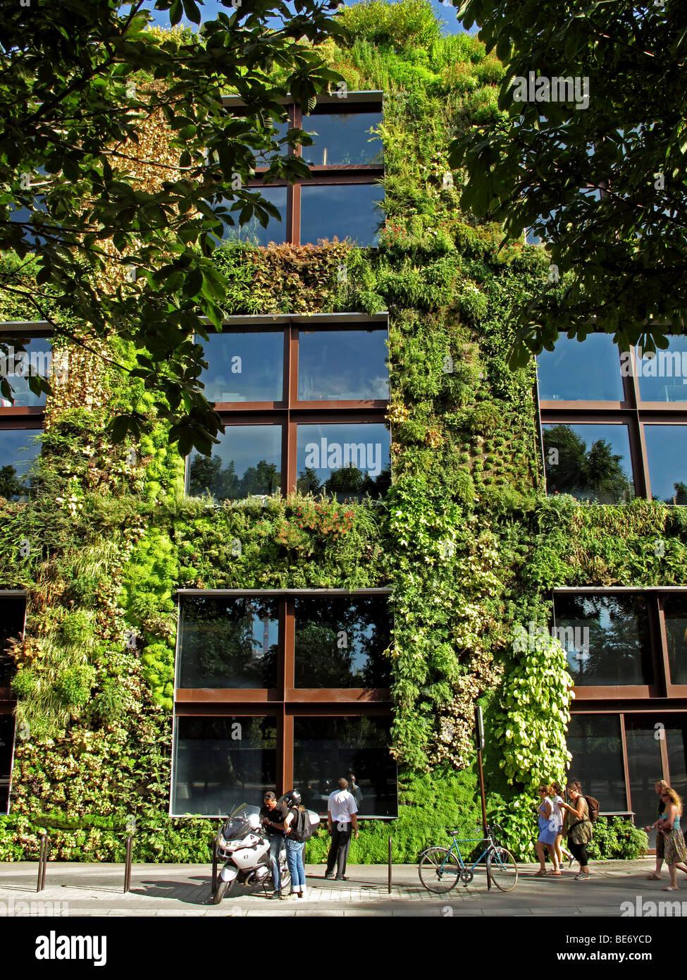 Vertical Garden Patrick Blanc Musee Du Photos & Vertical Garden ...