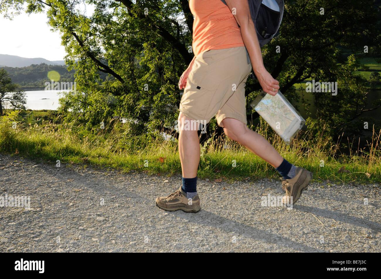 De longueur 3/4 female hiker holding walking pole et carte dans le Lake District, Cumbria. United Kingdom. Banque D'Images