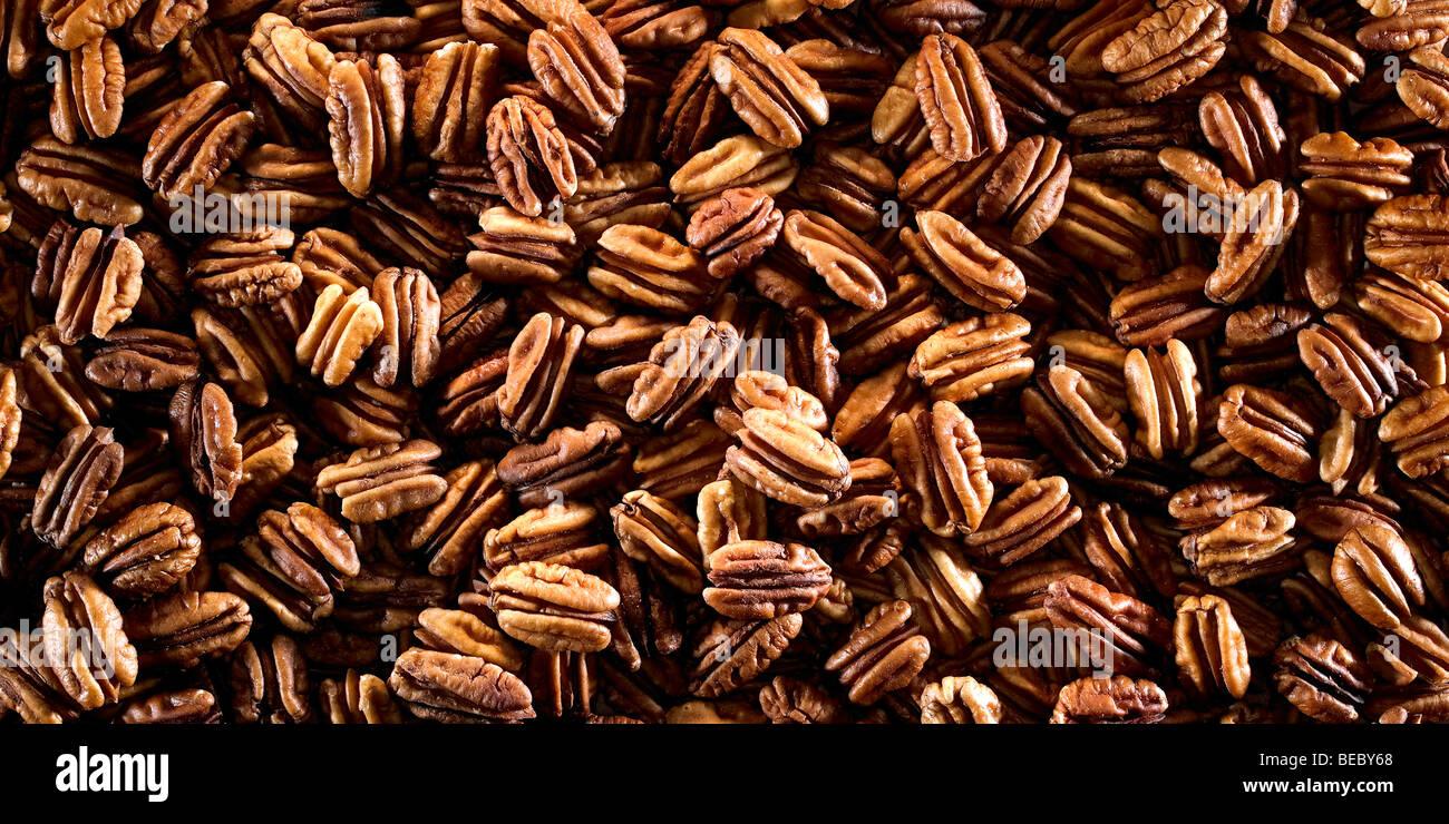 Noix de pécan. Photo Stock
