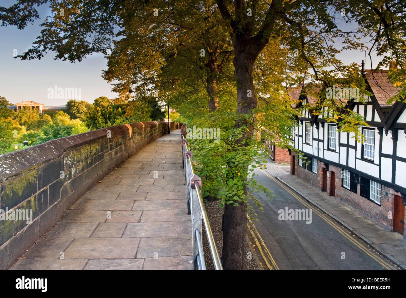 Les neuf maisons et remparts romains, Chester, Cheshire, Angleterre, Royaume-Uni Photo Stock