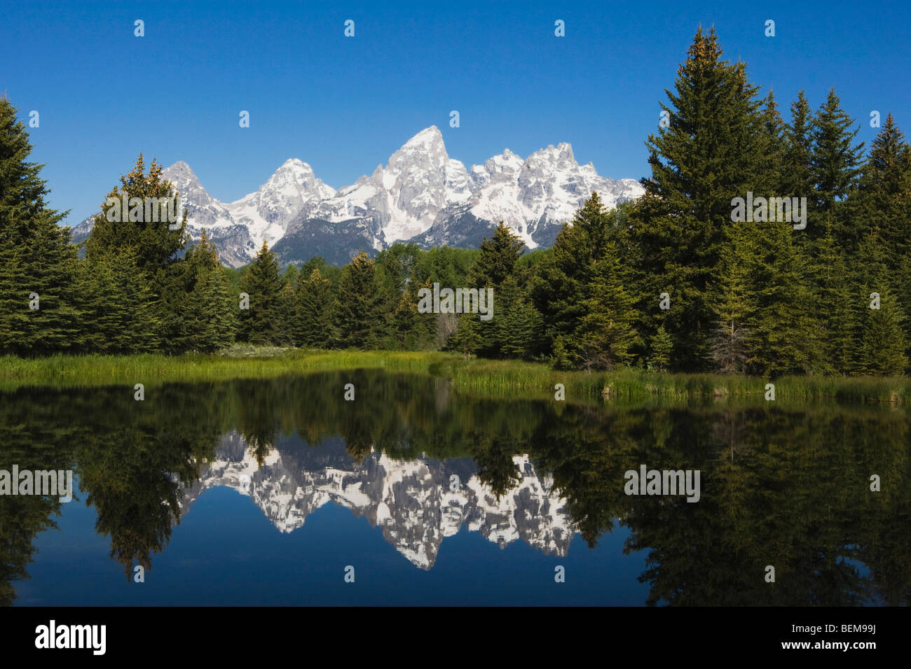 Tetons se reflétant dans l'étang, l'atterrissage Schwabacher, Grand Teton NP, Wyoming, USA Photo Stock