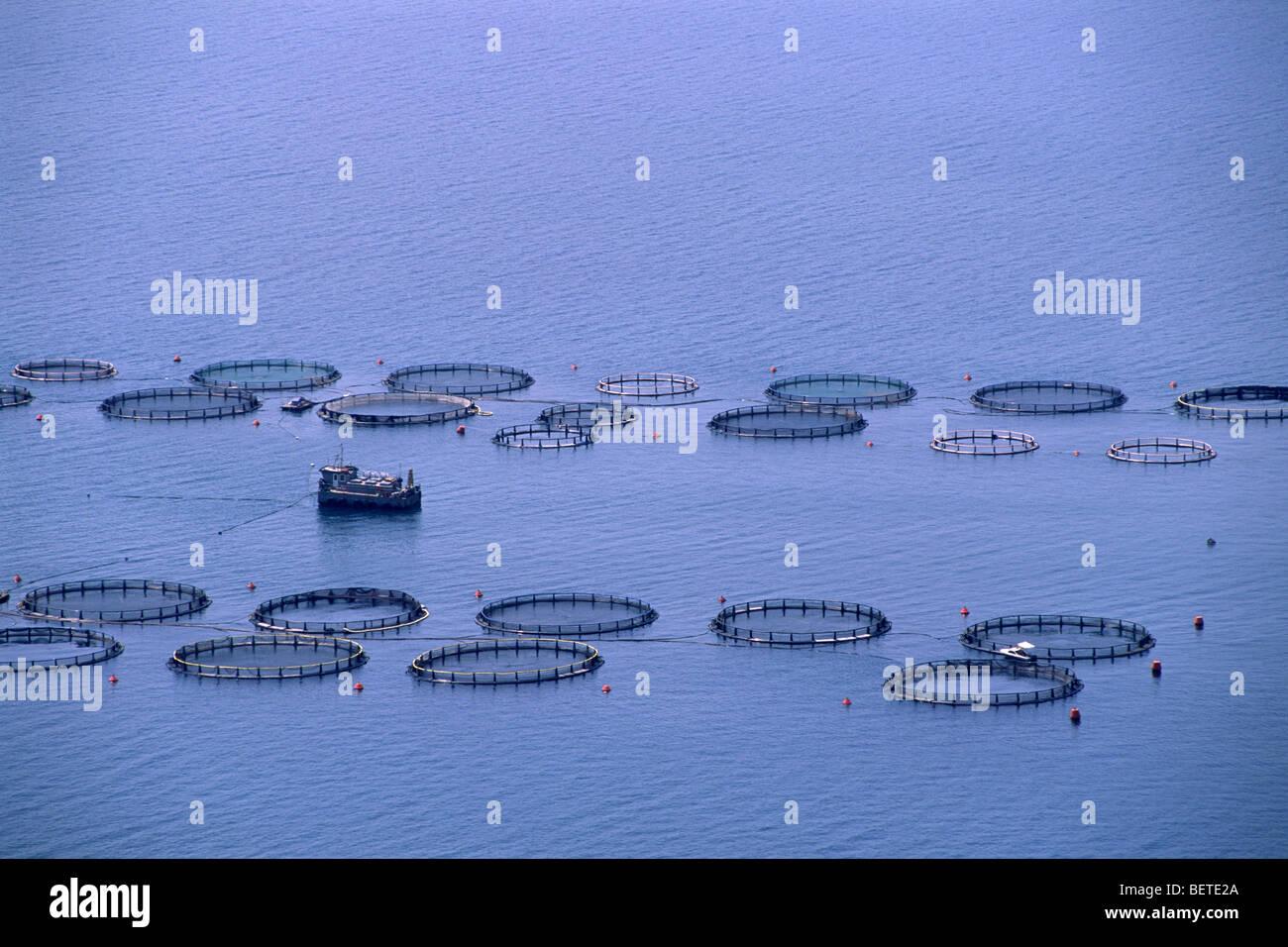 La Grèce, îles Ioniennes, Céphalonie, fish farms Photo Stock