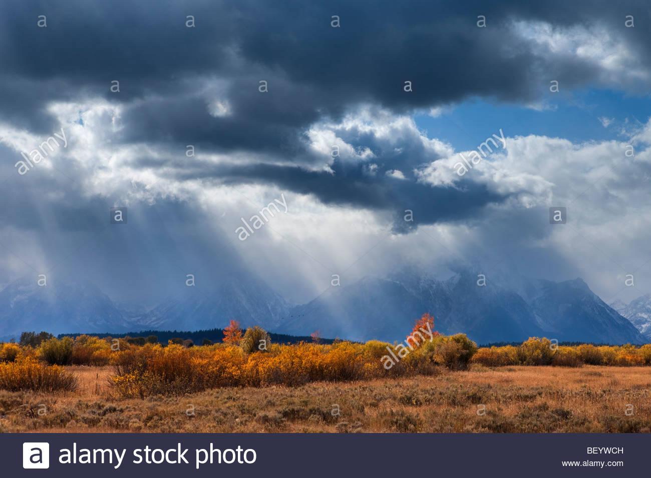 Après-midi les nuages de tempête tower sur le mont Moran et d'autres pics dans le Grand Teton National Photo Stock