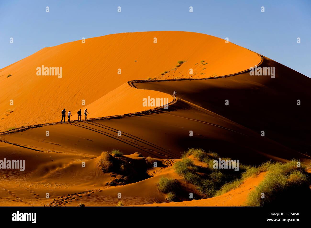 Randonnées touristiques les dunes rouges de Sossusvlei, le Parc National Namib Naukluft, Namibie Photo Stock