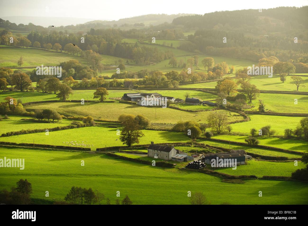 Après-midi d'automne, vue de fermes et de terres agricoles dans la vallée de la Tywi Dinefwr castle Photo Stock