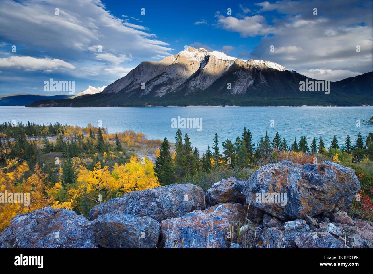 Le lac Abraham et le mont Michener, plaines de Kootenay, Alberta, Canada Photo Stock