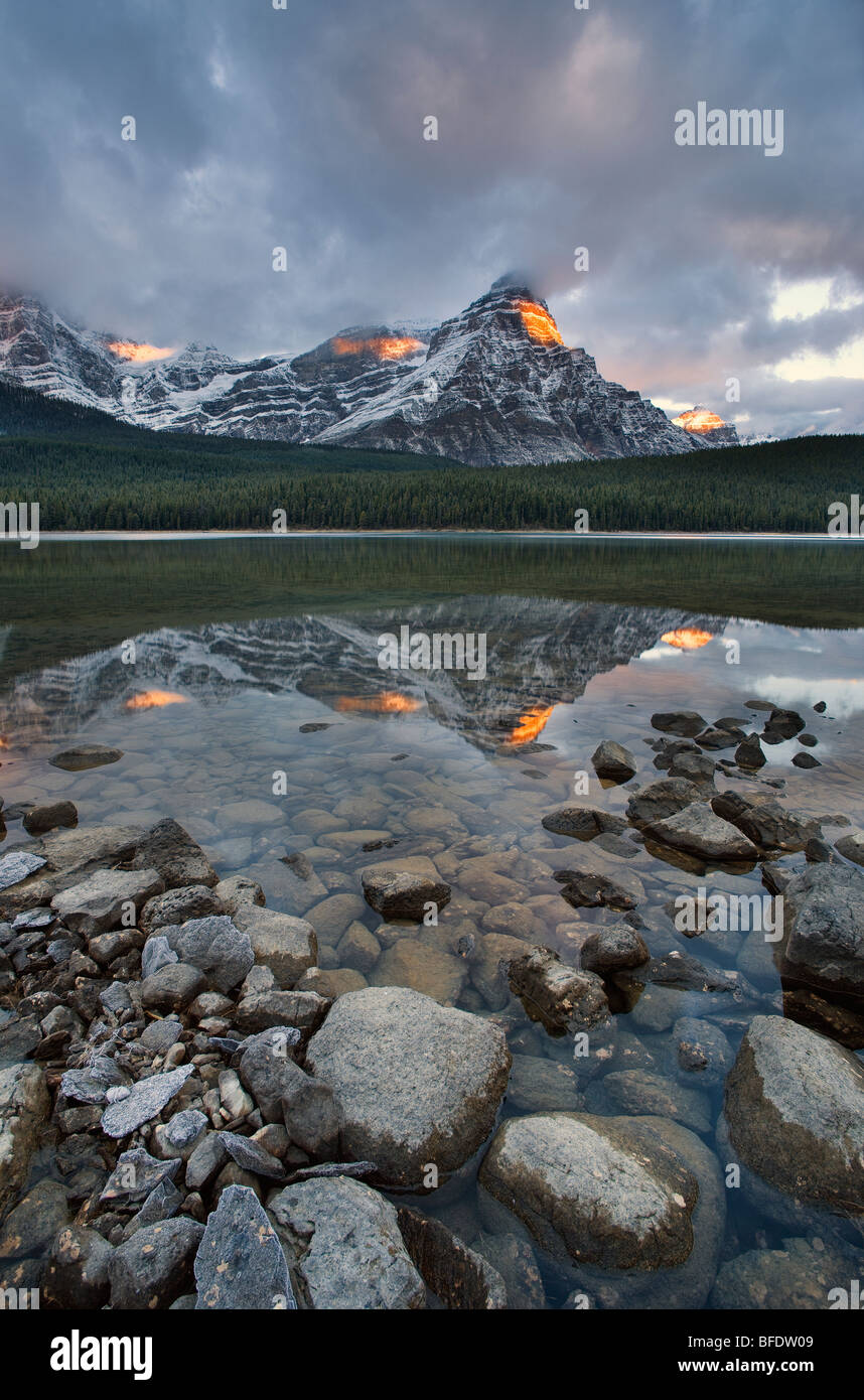 Mont Chephren reflétée dans la Waterfowl Lake, Banff National Park, Alberta, Canada Photo Stock