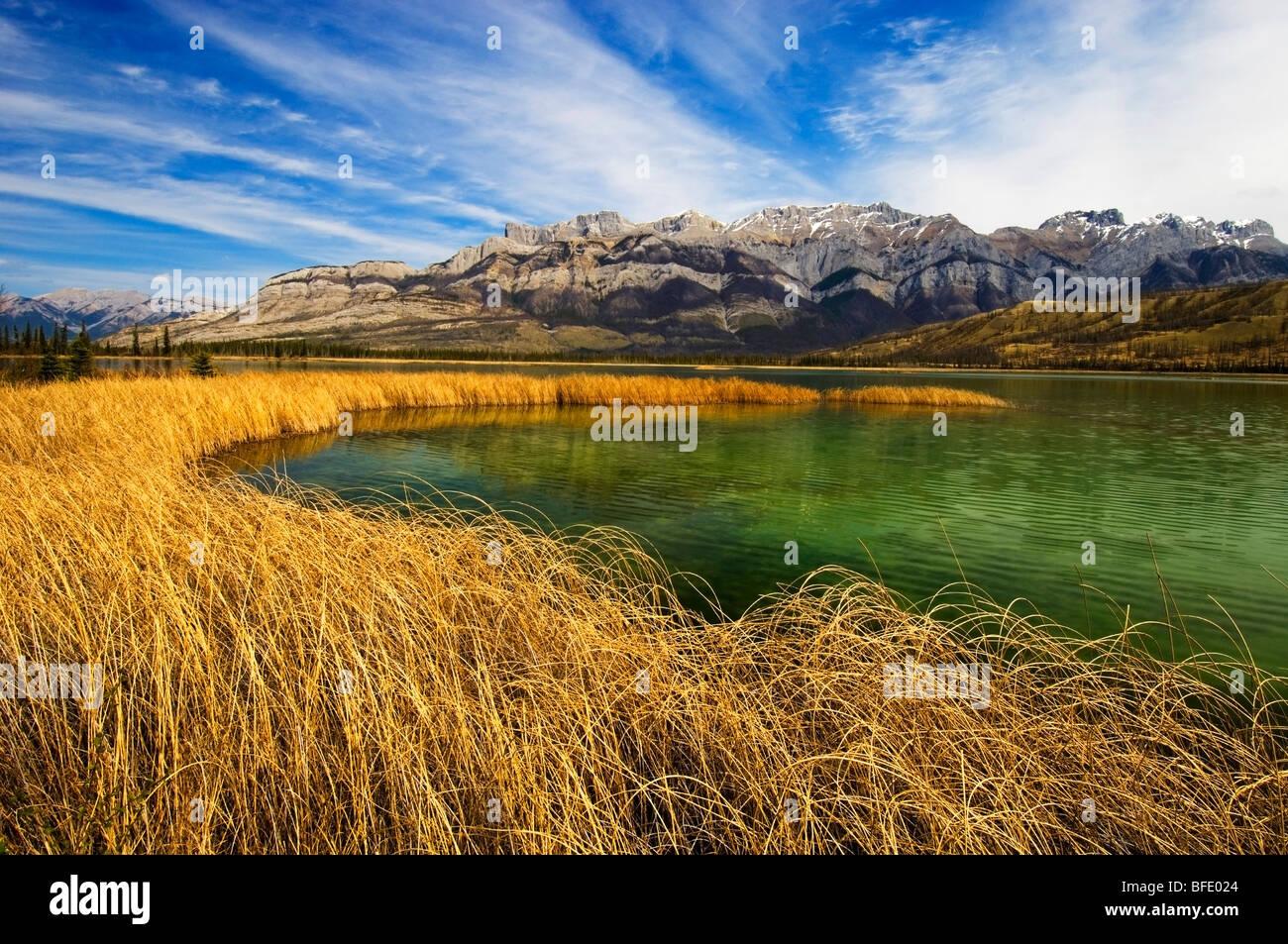 Le lac Talbot et la gamme de Miette, Jasper National Park, Alberta, Canada Photo Stock