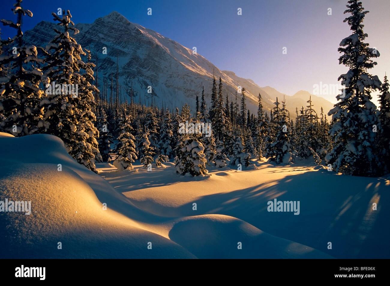 Coucher de soleil sur paysage d'hiver, au lac de la rampe, Banff National Park, Alberta, Canada Photo Stock