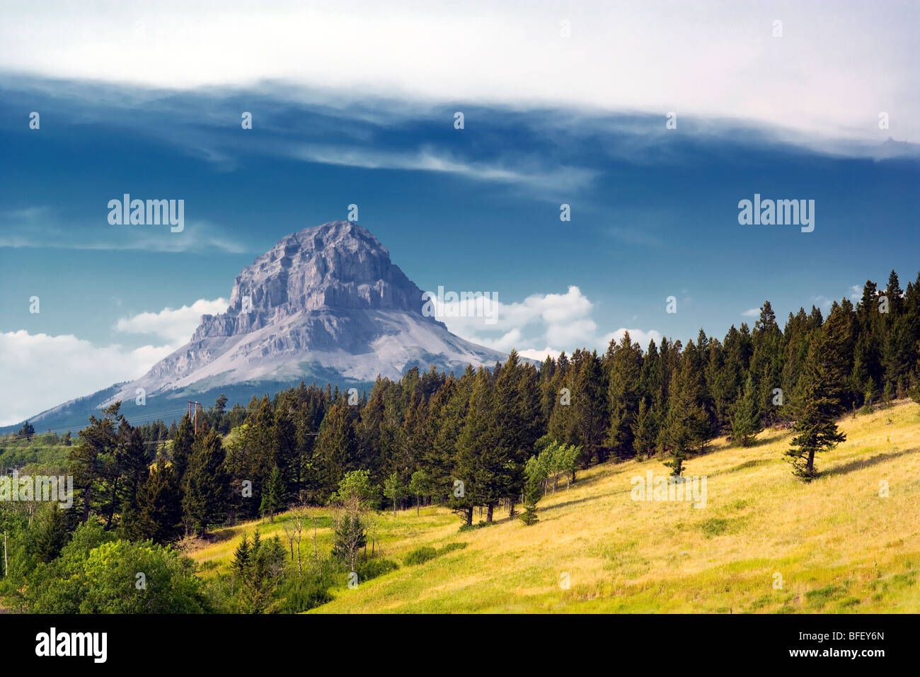 Nid-de-Mountain, Alberta, Canada, Rocheuses, Photo Stock