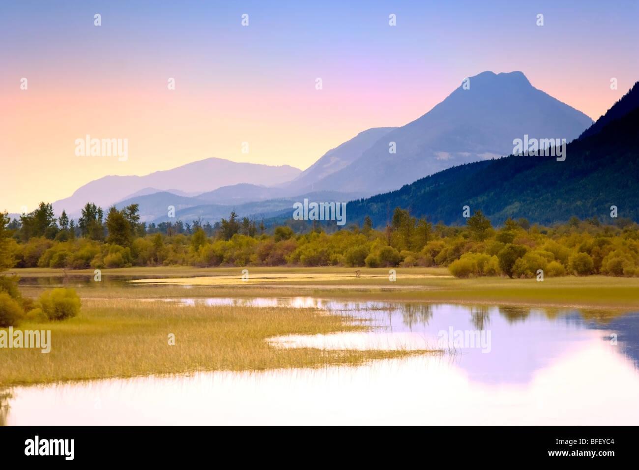 Dans la montagne lac, Harrogan, Colombie-Britannique, Canada Photo Stock