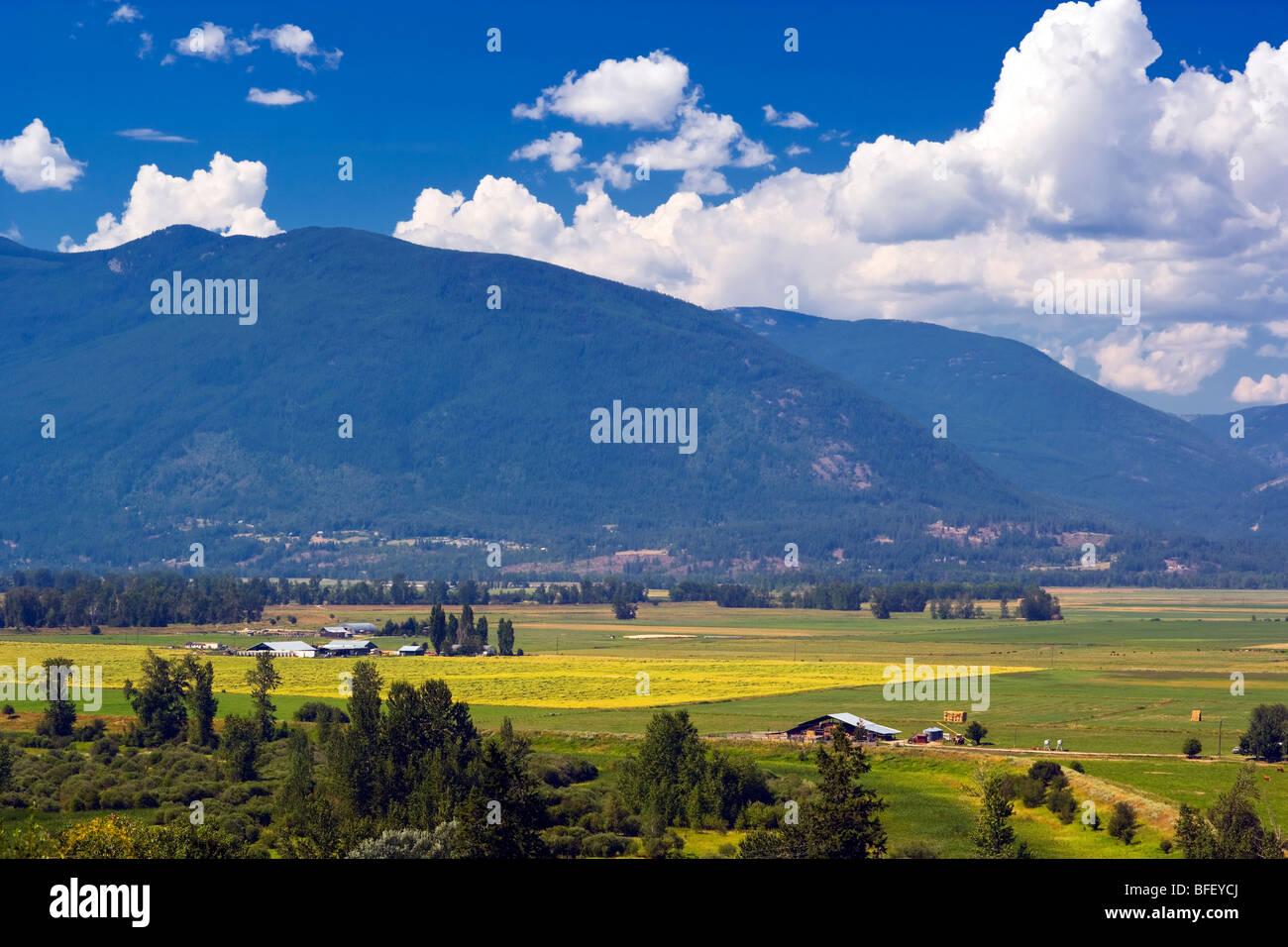 Fermes dans la fertile vallée de Creston, en Colombie-Britannique, au Canada, de l'agriculture Photo Stock
