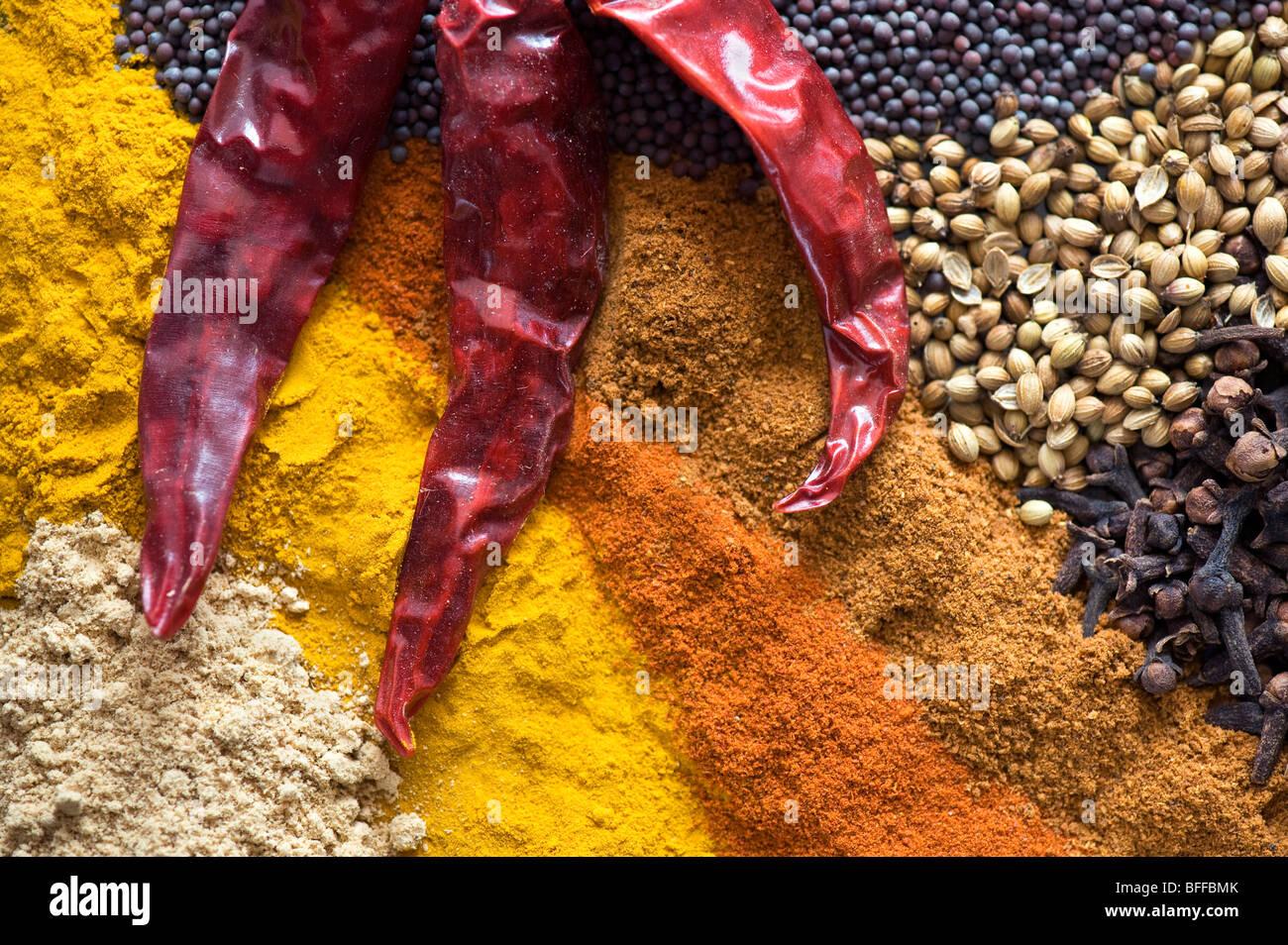 La cuisine des épices indiennes Photo Stock