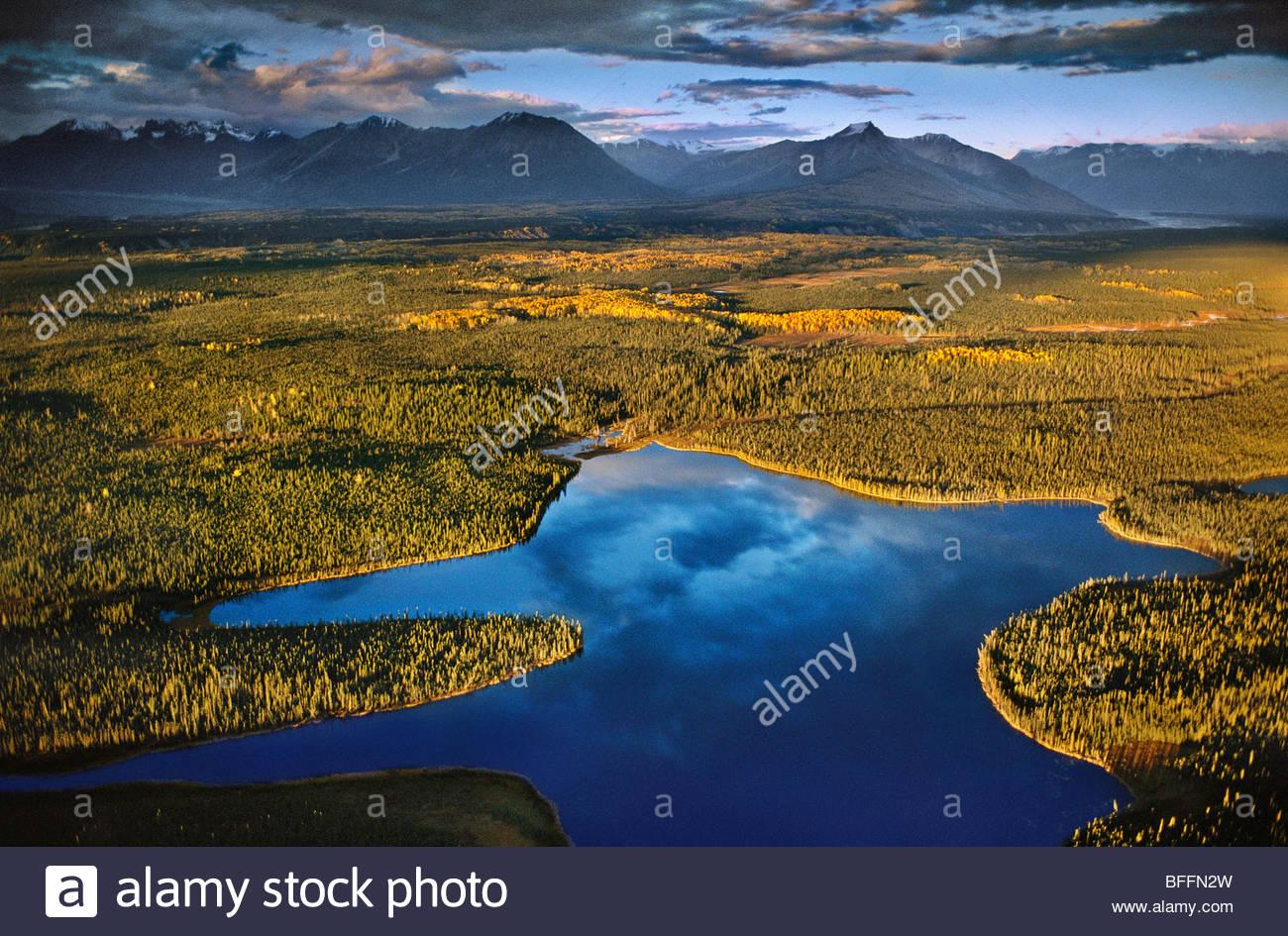 Les lacs et les muskegs (antenne), la vallée de la rivière Chitina, Wrangell St Elias National Park, Alaska Photo Stock