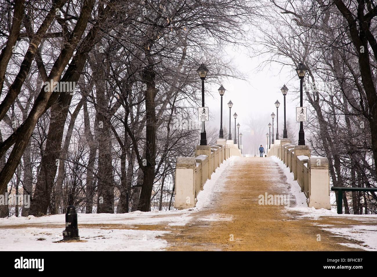 Passerelle du Parc Assiniboine fraîchement poncé sur matin d'hiver brumeux. Winnipeg, Manitoba, Canada. Photo Stock