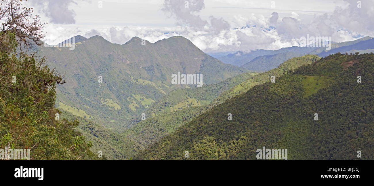 Vue depuis la réserve de Yanacocha, près de Quito, en Équateur. Photo Stock