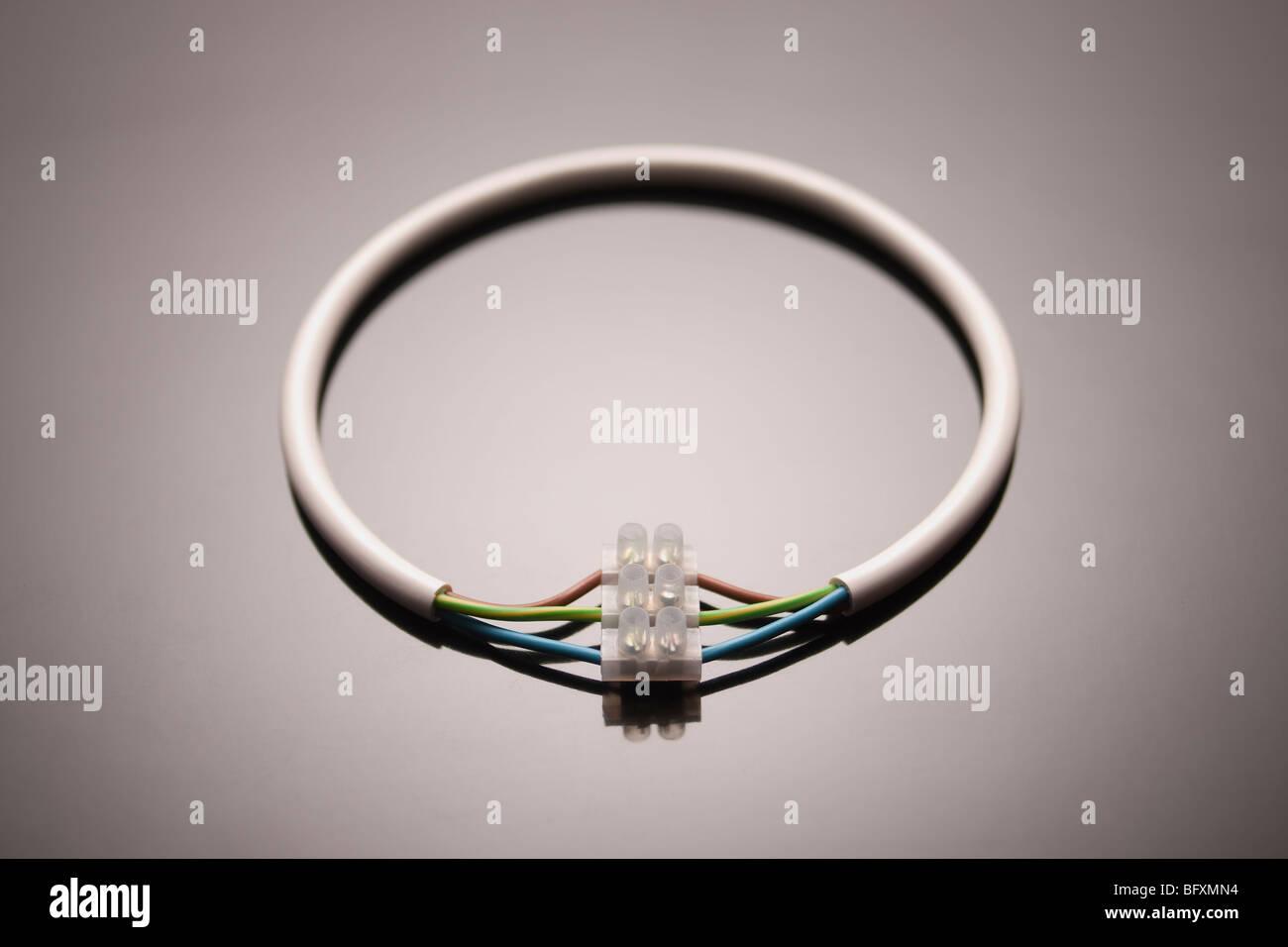 Un cercle de fil relié à lui-même Photo Stock