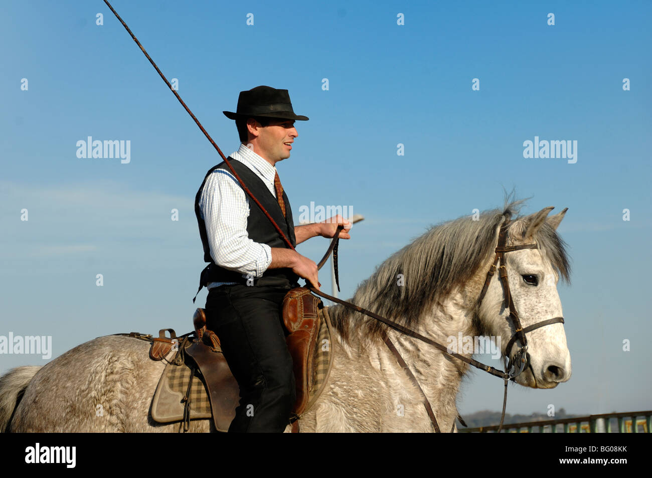 Cheval Camargue Rider connu comme un