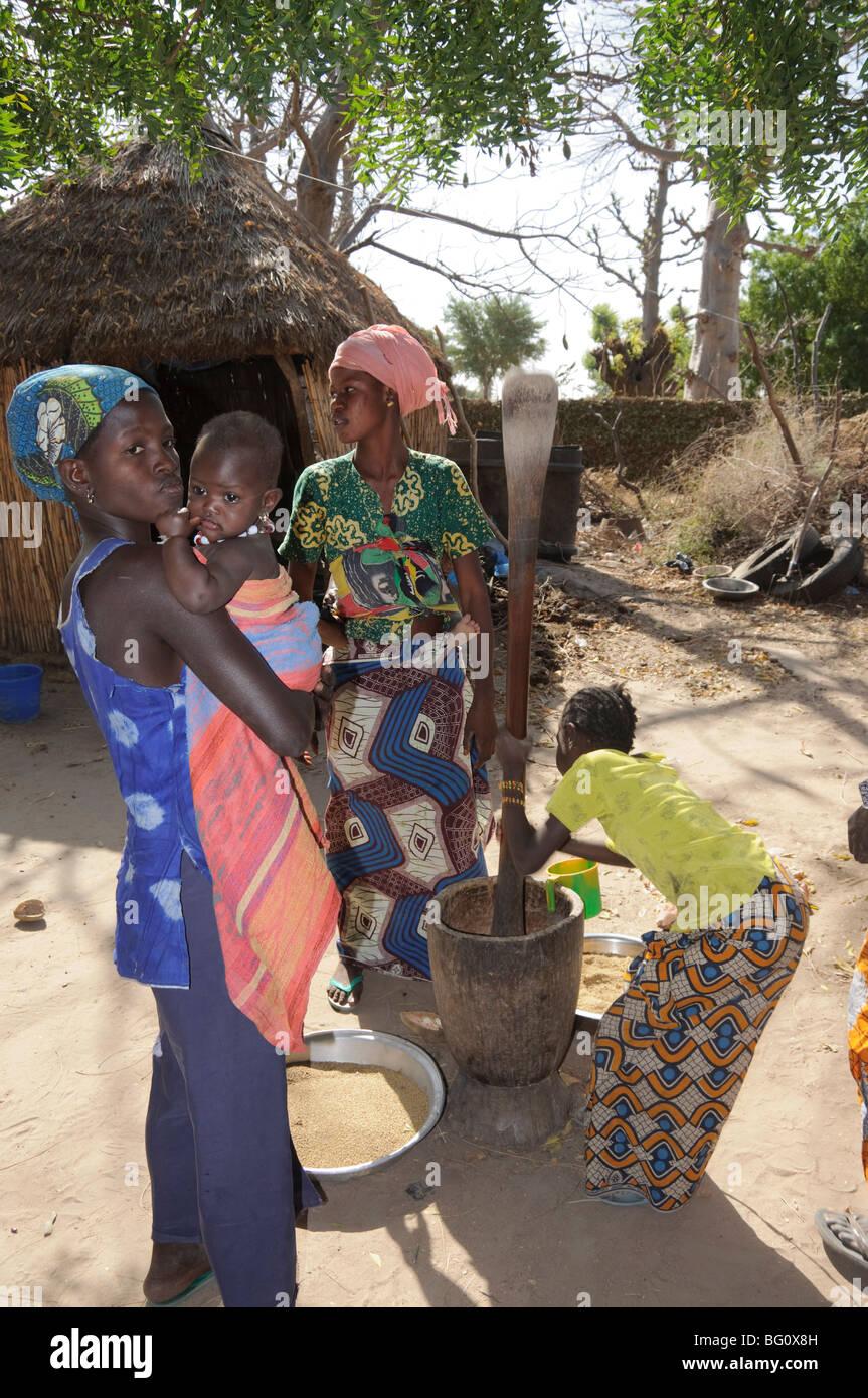 Battre le mil, Sérère (Sérère) Village tribal, Sénégal, Afrique de l'Ouest, l'Afrique Photo Stock