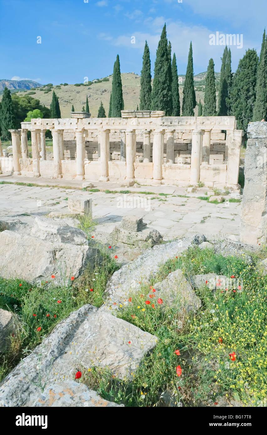 Ancienne nécropole, façon monumentale, Hiérapolis, Pamukkale, Site du patrimoine mondial de l'UNESCO, de l'Anatolie, Banque D'Images