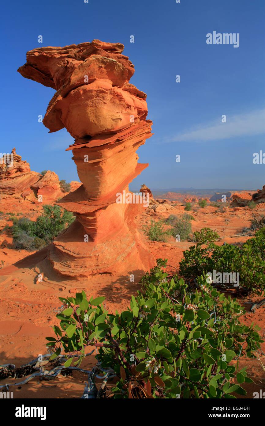 Formation en forme de phare dans le BLM administré falaises Vermilion National Monument, Arizona Photo Stock