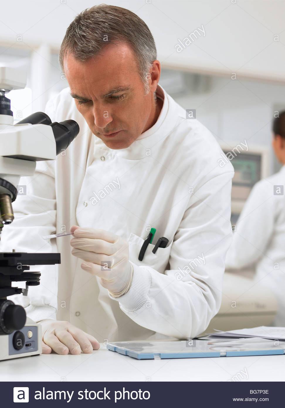 Scientist using microscope in laboratory Photo Stock