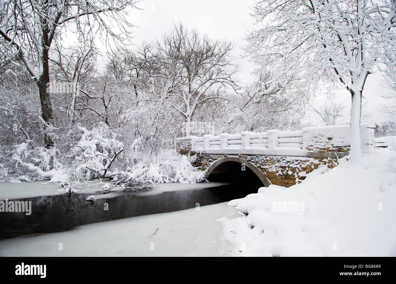 De fortes chutes de neige se bloque sur les arbres et arbustes près de Wingra Creek après 14-pouces de Photo Stock