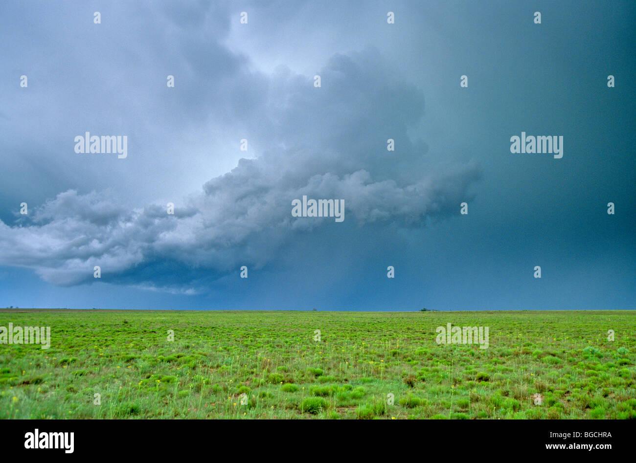 Tempête sur de grandes plaines de la Llano Estacado, jalonnés de plaines, près de Portales, New Mexico, Photo Stock