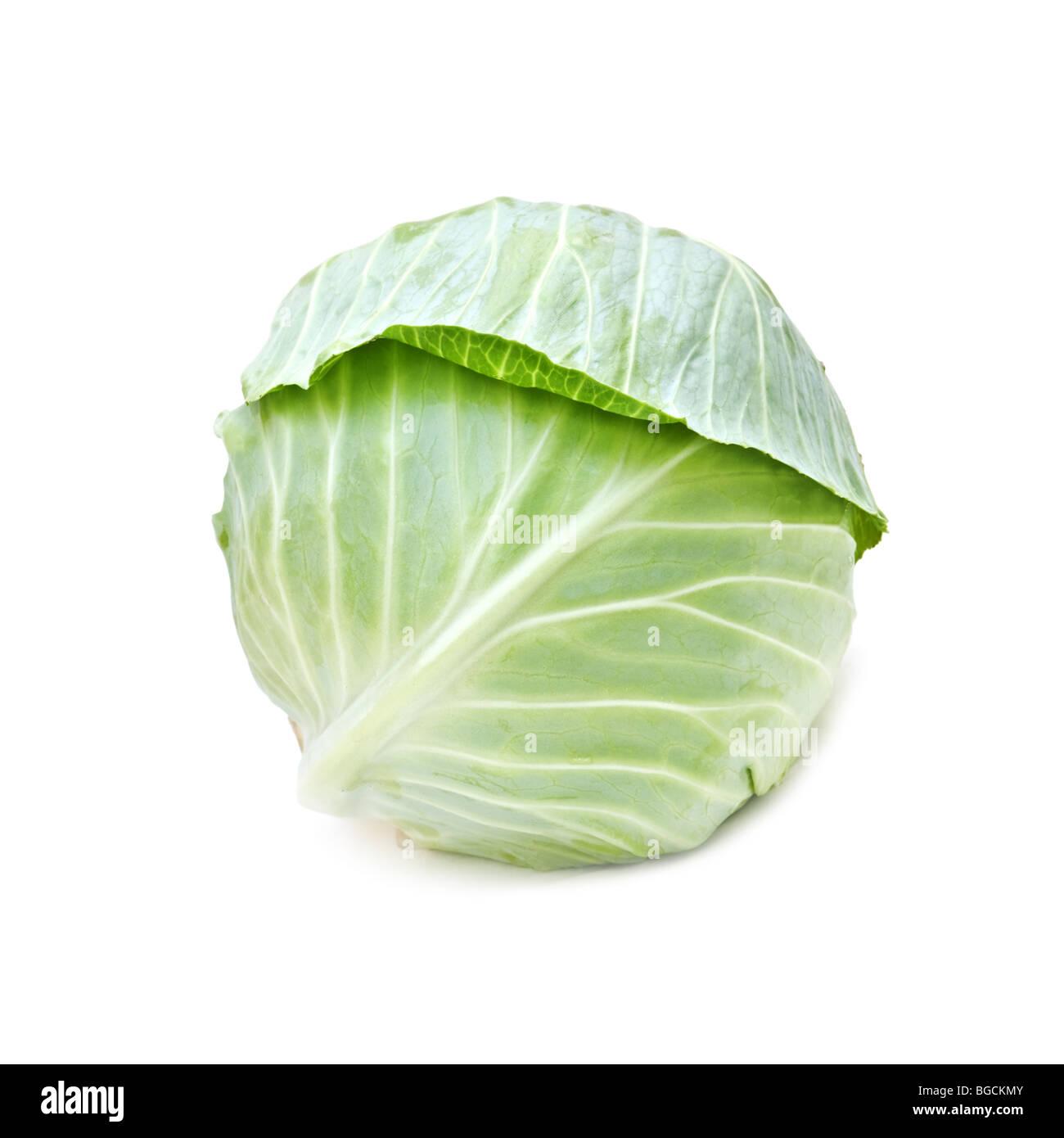 Le chou isolated on white Photo Stock