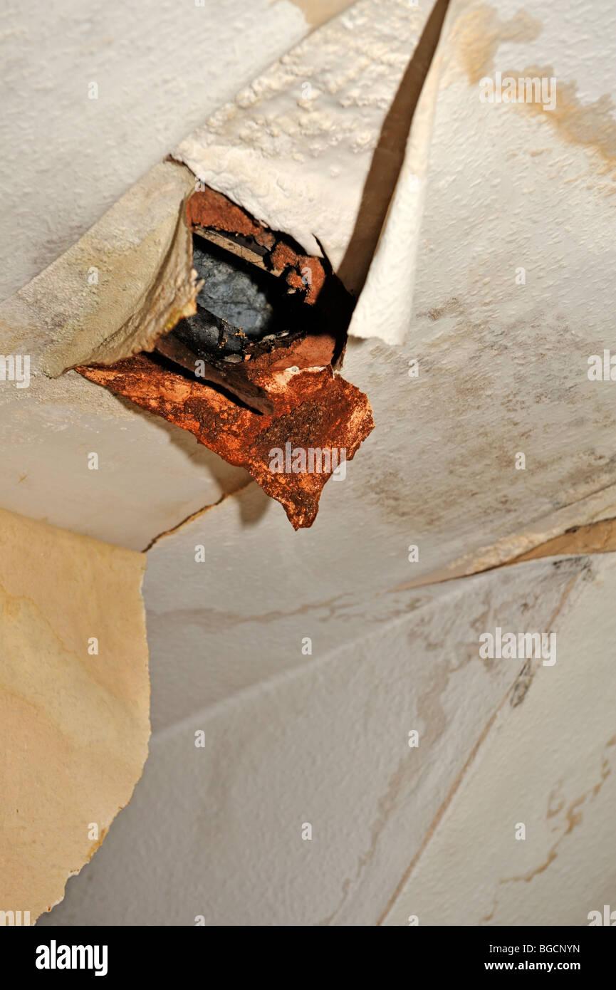Damaged Ceiling Water Damaged Photos Damaged Ceiling Water Damaged