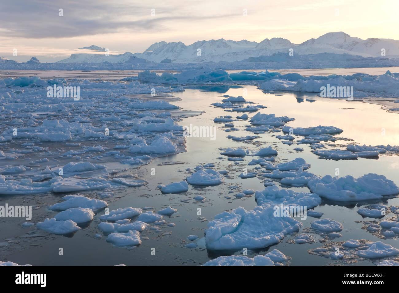 Tiniteqilaq et glace de mer dans le fjord, E. Photo Stock