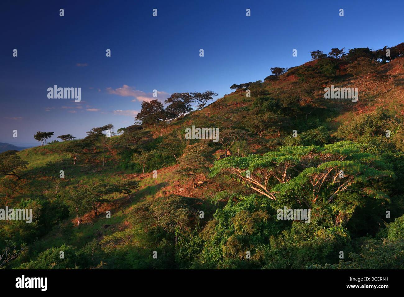 La première lumière sur une colline au-dessus de Llo à Cocle province, République du Panama. Photo Stock