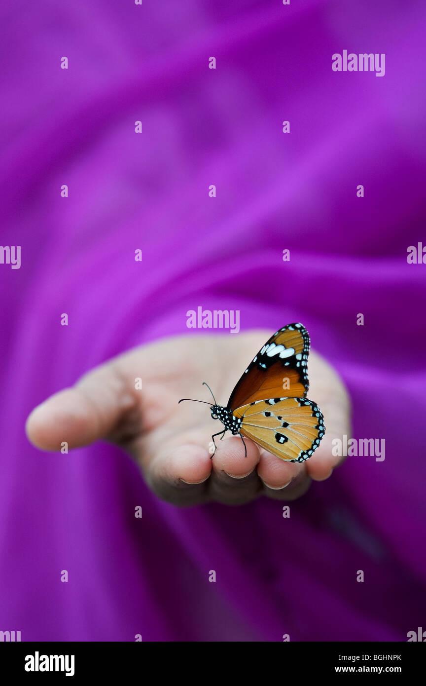 Danaus chrysippe. Plain Tiger papillon sur les filles indiennes la main. L'Inde Photo Stock