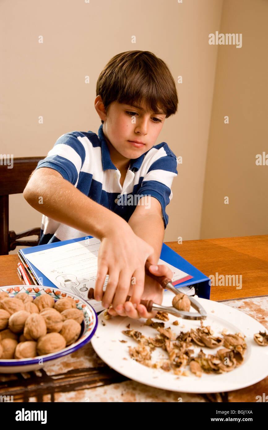 4ème année garçon blanc noix de craquage tout en faisant ses devoirs à la table de la cuisine. Photo Stock