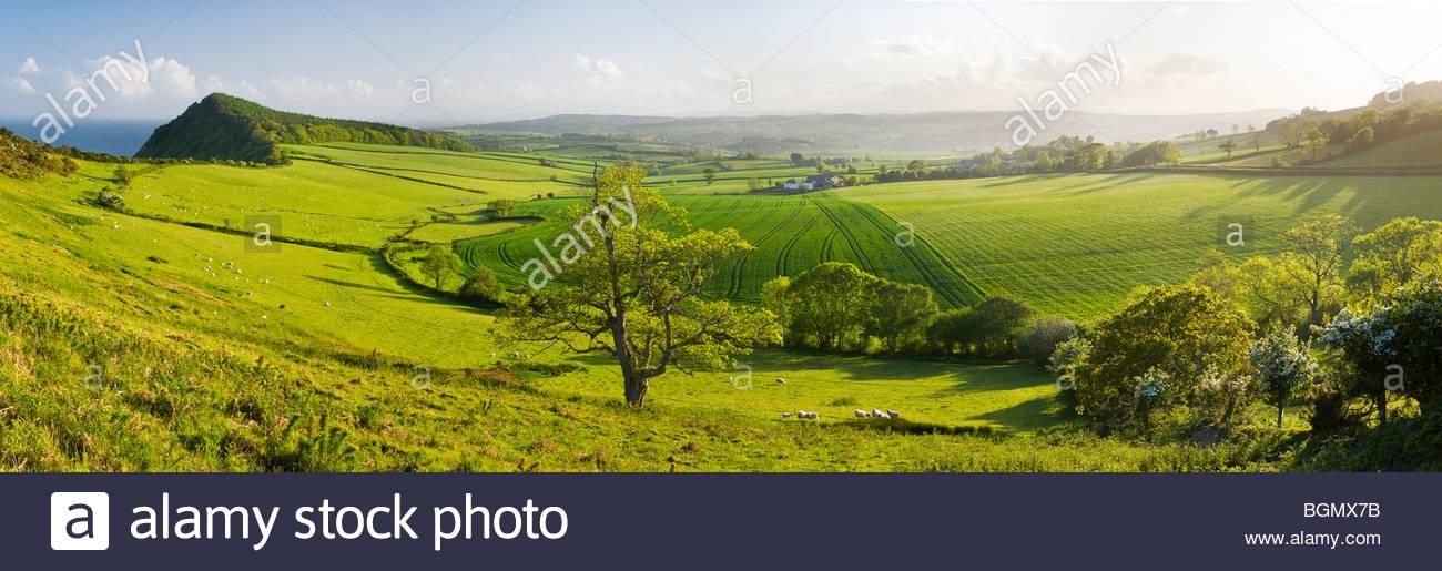 Vue depuis la colline de pointe, près de Sidmouth, l'est du Devon, Angleterre. Photo Stock