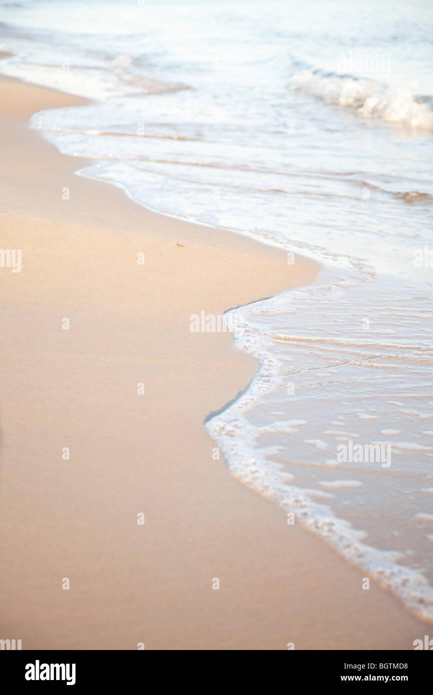 Surf doux clapotis contre un golden shore Photo Stock