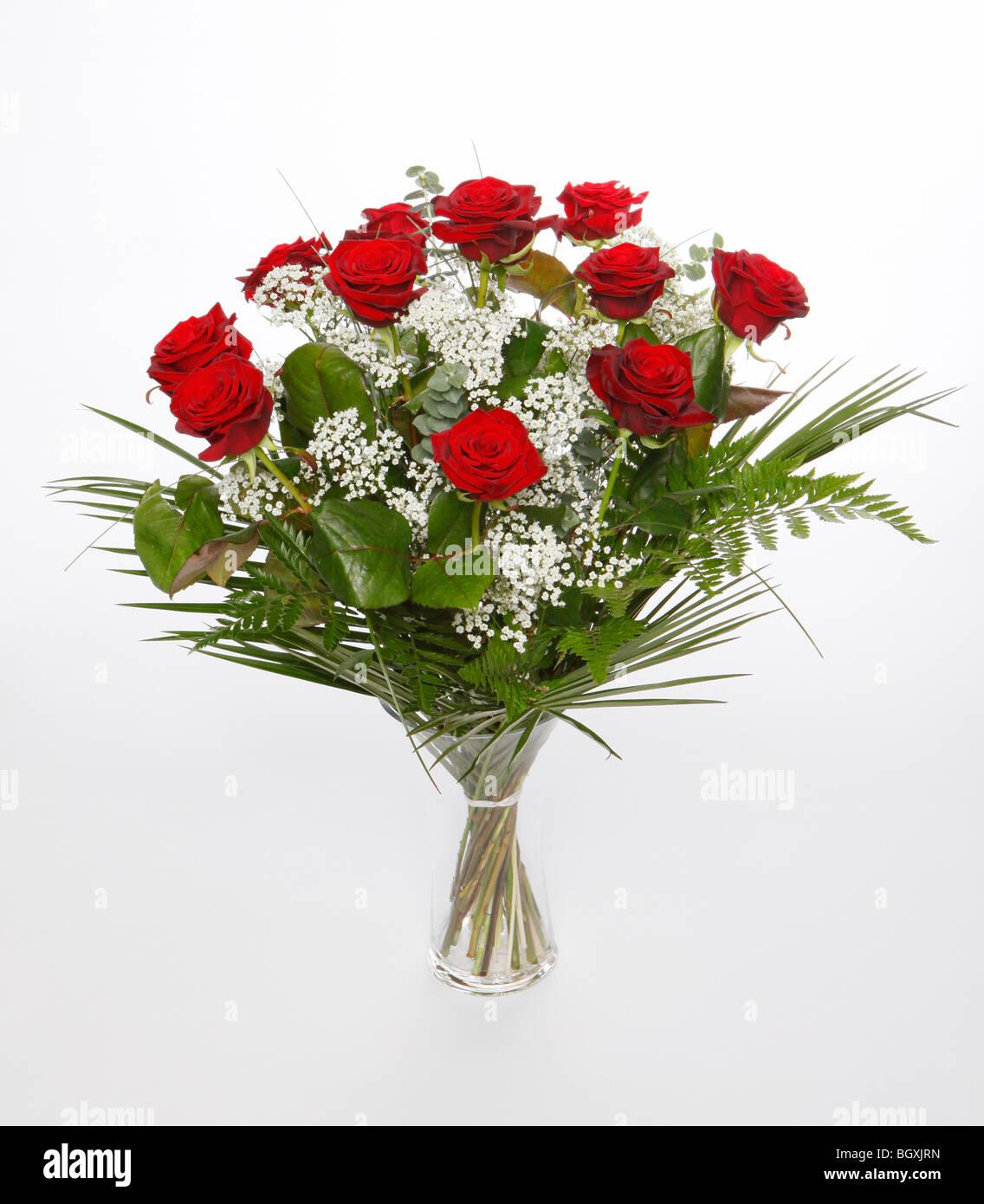 Une douzaine de roses rouges pour la Saint Valentin. Des fleurs sur un fond blanc Photo Stock
