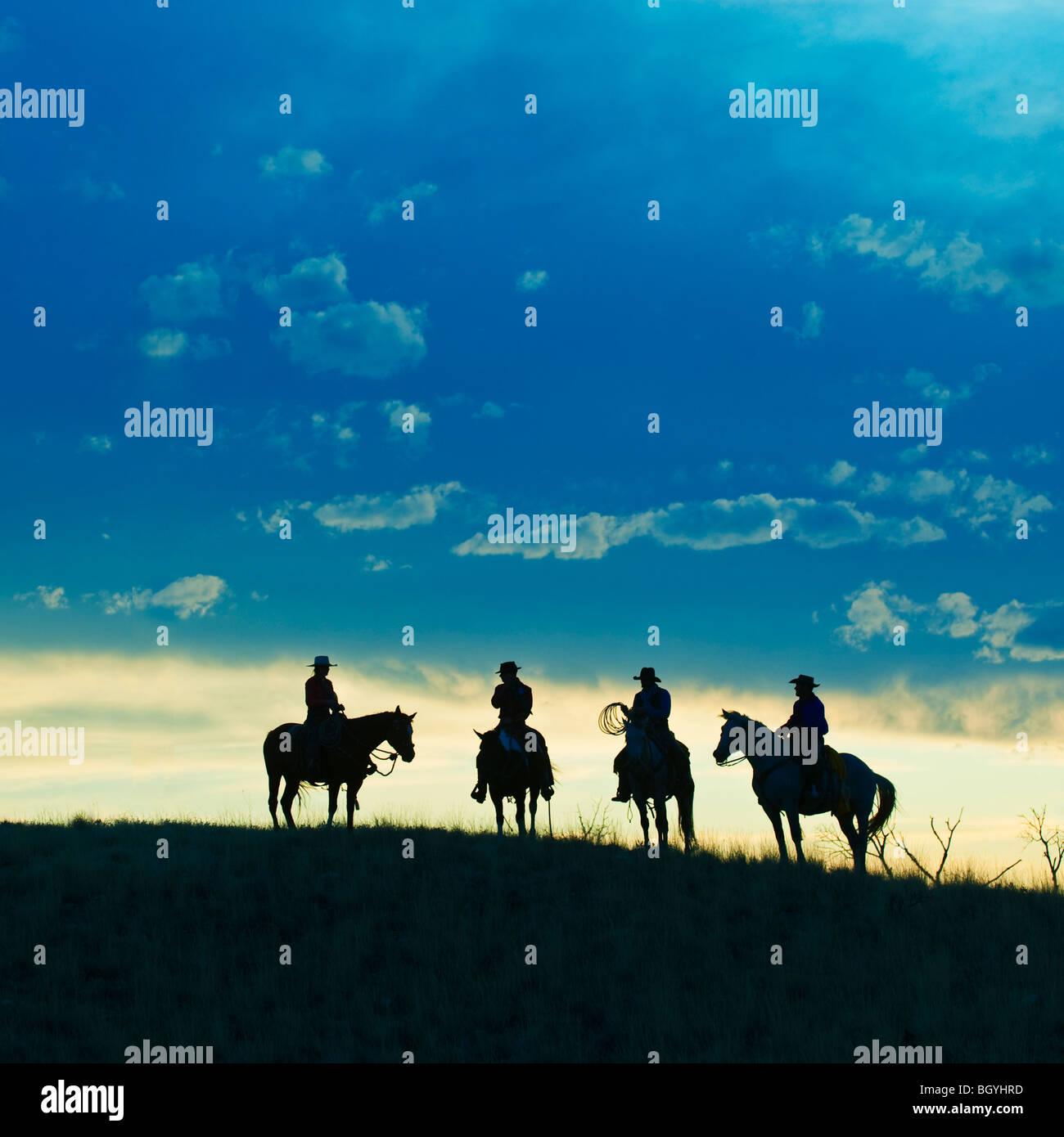 Les cavaliers Photo Stock