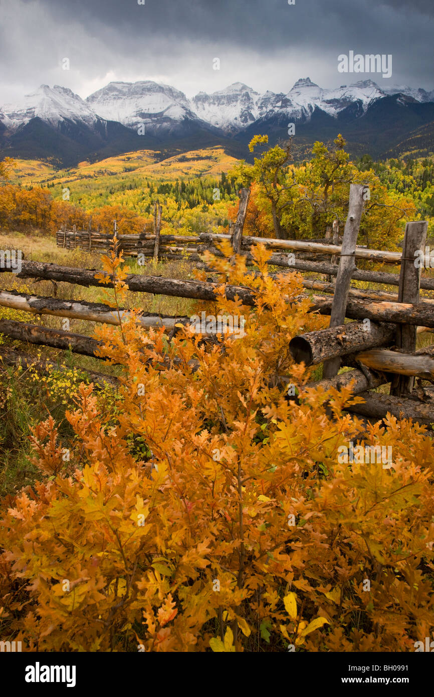 Couleurs d'automne et le Sneffels Range, montagnes de San Juan, au Colorado. Photo Stock