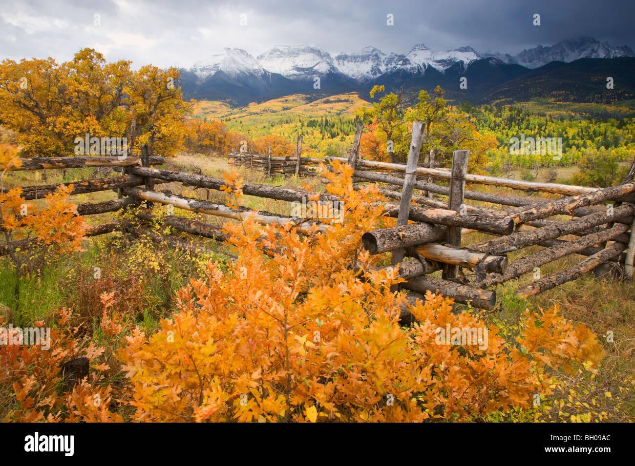 Couleurs d'automne et le Sneffels Range, montagnes de San Juan, au Colorado. Photo Stock