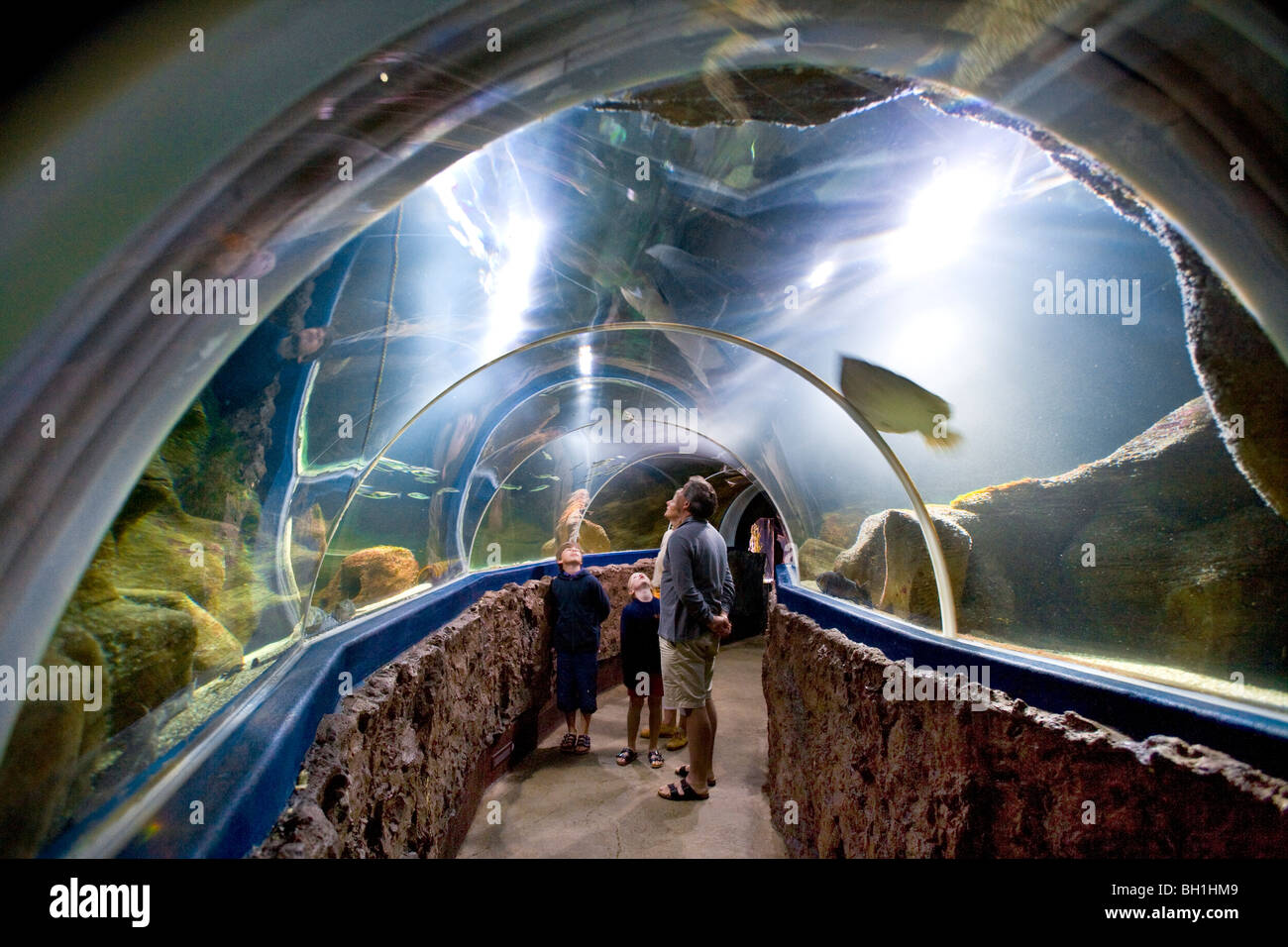 Les personnes qui visitent l'Aquarium, Westerland, l'île de Sylt, Schleswig-Holstein, Allemagne Photo Stock