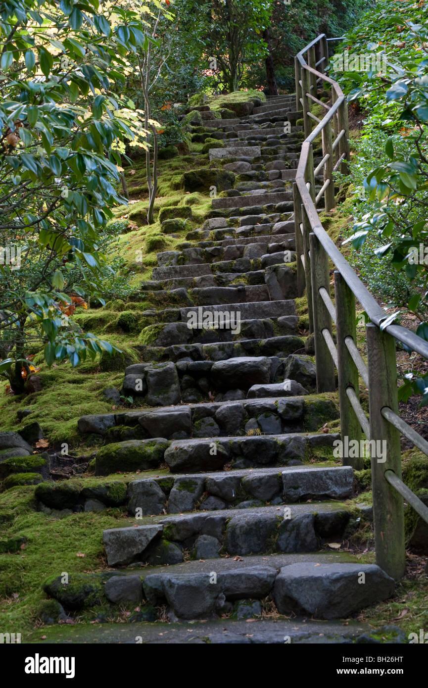 Escalier en pierre rustique à Portland Oregon\'s Jardin japonais ...