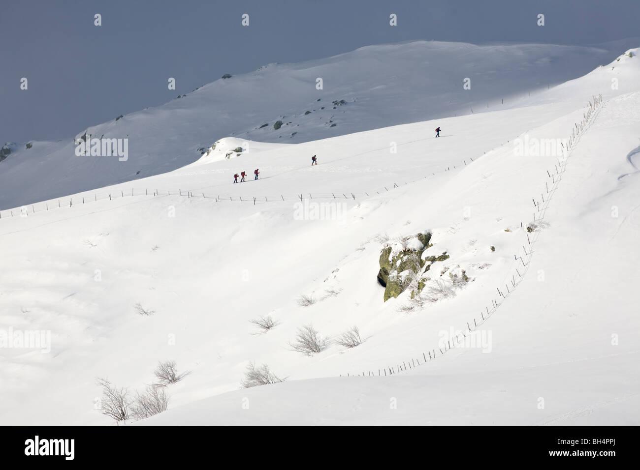 Cinq randonneurs en raquettes à neige dans un paysage d'Auvergne. Cinq promeneurs en raquettes se déplaçant Photo Stock