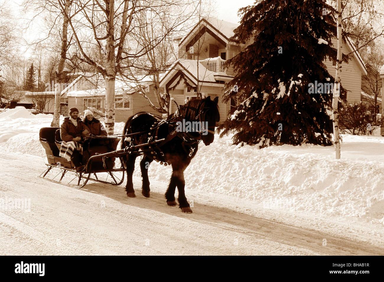 sleigh photos sleigh images alamy. Black Bedroom Furniture Sets. Home Design Ideas