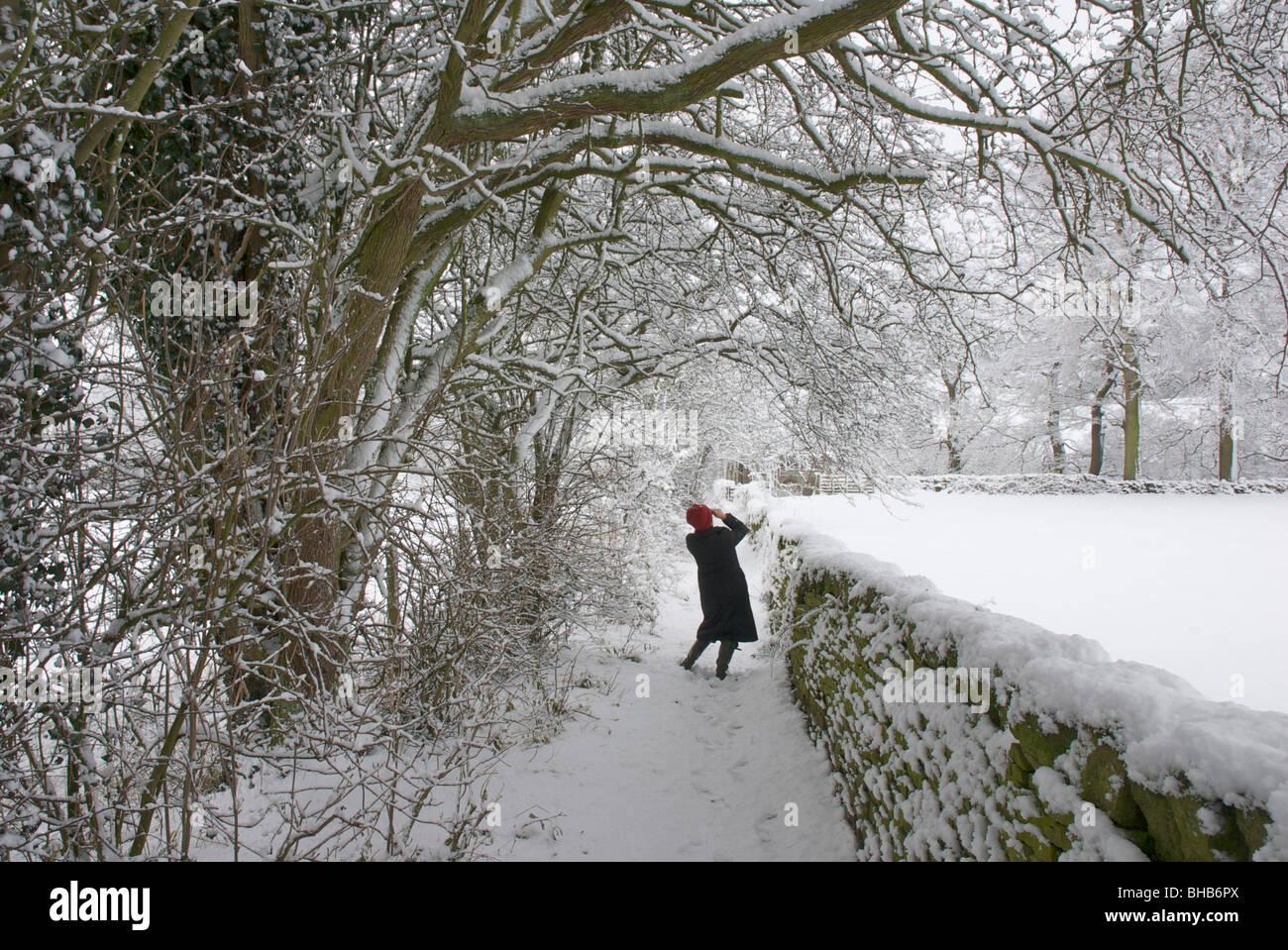 Femme de prendre une photo sur le chemin enneigé près de Bolton Abbey, Wharfedale, North Yorkshire, England Photo Stock