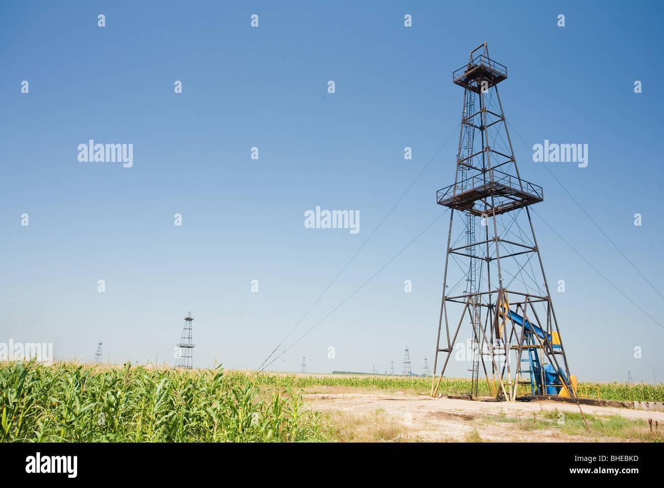 Champ de puits de pétrole dans un milieu d'un champ de maïs. L'agriculture et l'industrie. Photo Stock