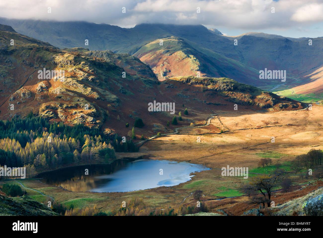 Blea Tarn et Wrynose est tombé dans le Parc National du Lake District, Cumbria, England, UK. L'automne Photo Stock
